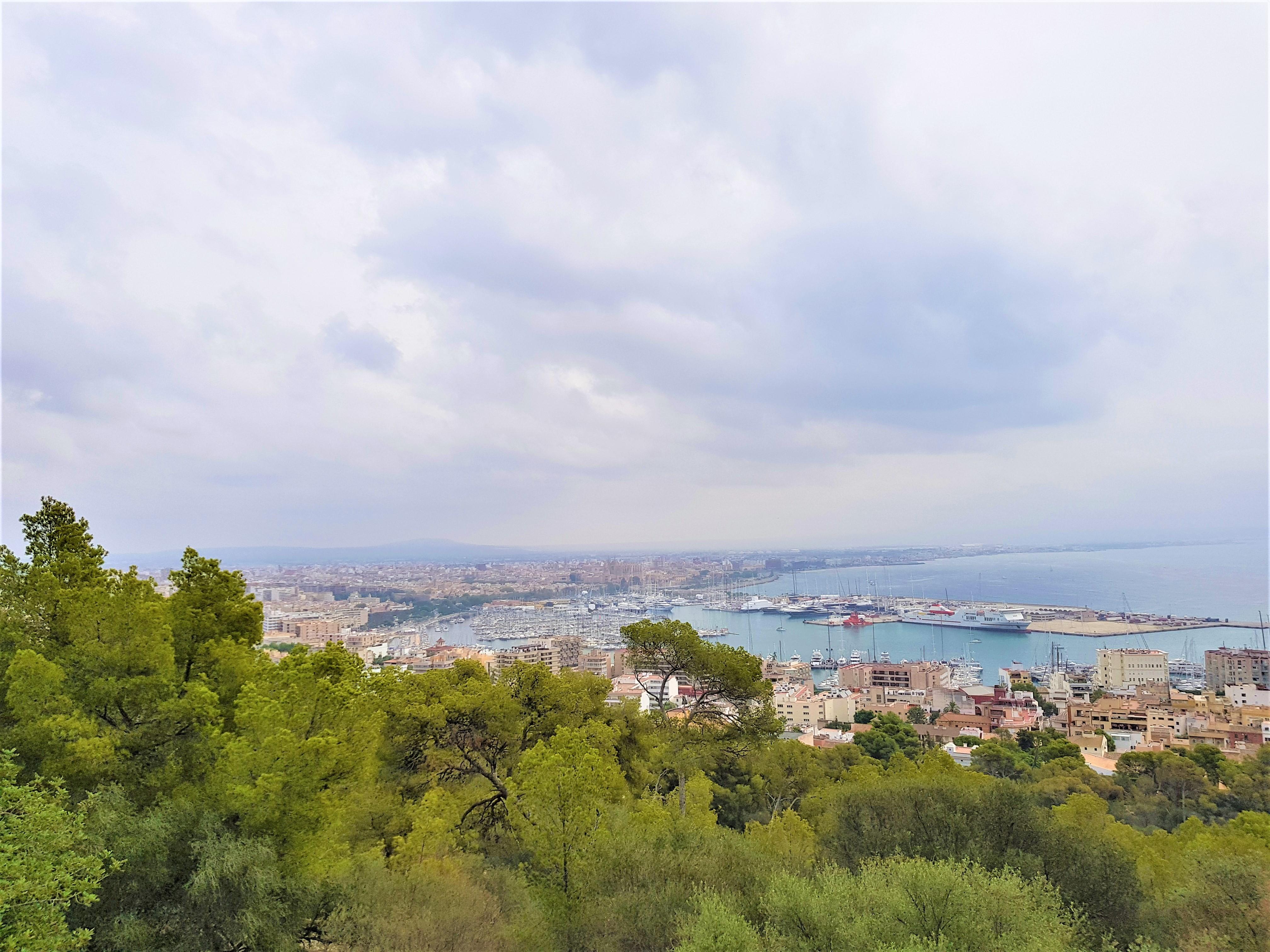 Kreuzfahrt nach Palma (de Mallorca): Hafen, Ausflüge & Sehenswürdigkeiten